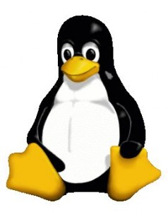 Linux Pinguin official image